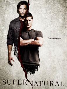 邪恶力量第6季海报